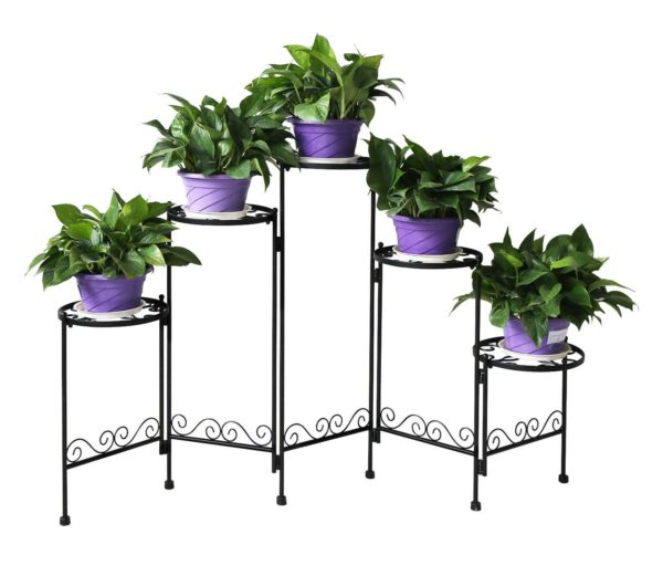 orchid display stand