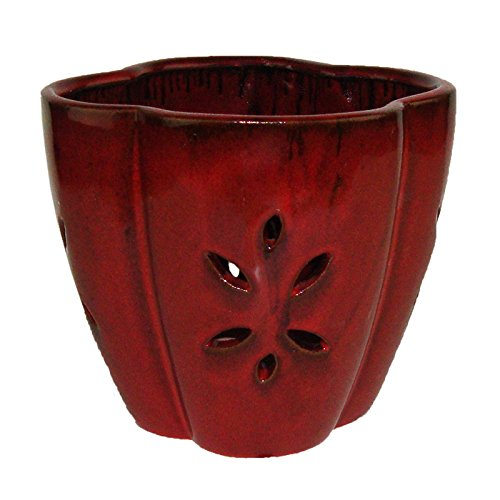 7inchceramicorchid pot