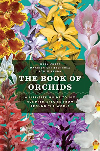 book about orchids