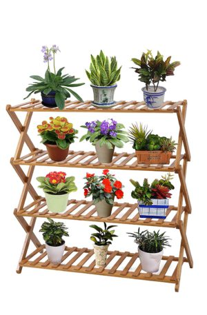 orchid display stands