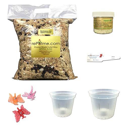 orchid starter kit