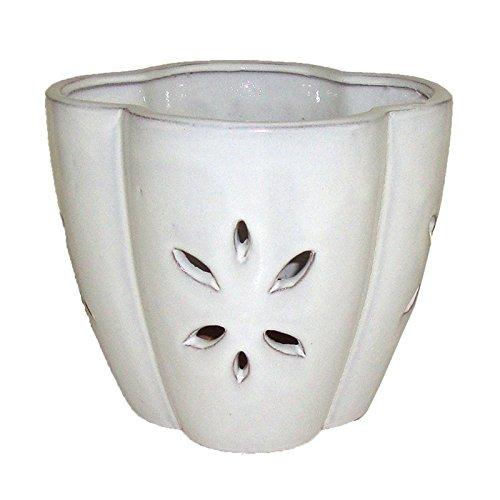 repot me white ceramic orchid pot