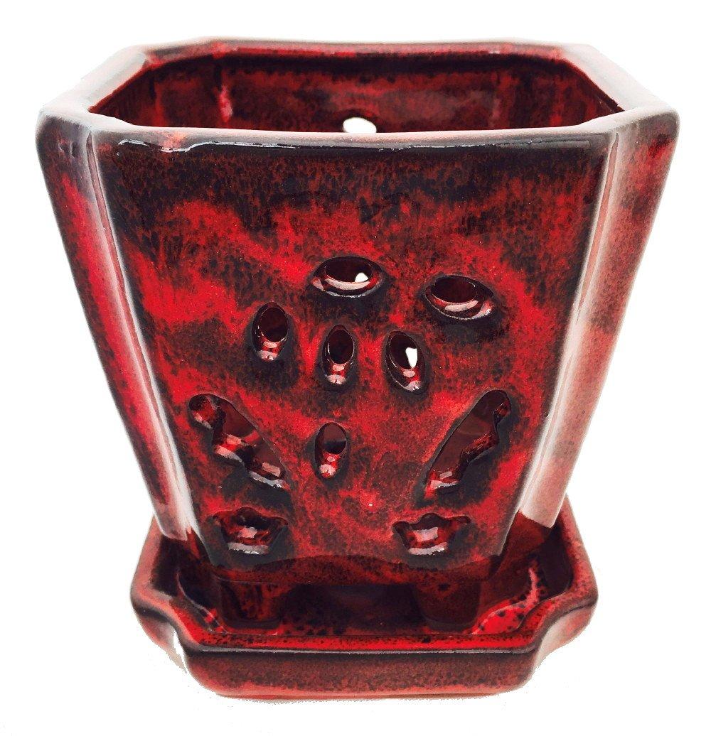 square orchid pot
