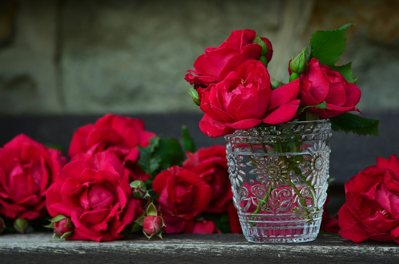 red roses in glass
