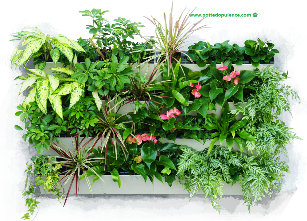vertical living wall planters
