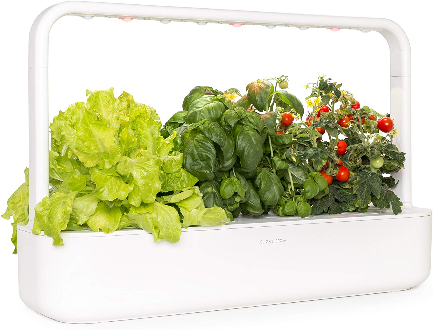 indoor vegetable gardening